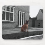 Picture of a Bullmastiff Mouse Pad