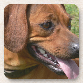 Picture of a Dachshund Dog Cork Coasters