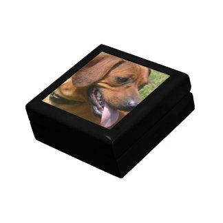 Picture of a Dachshund Dog Gift Box