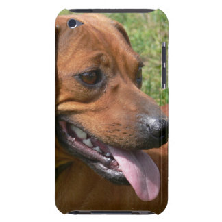 Picture of a Dachshund Dog iTouch Case Case-Mate iPod Touch Case