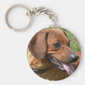 Picture of a Dachshund Dog Keychain