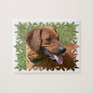 Picture of a Dachshund Dog Puzzle