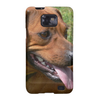 Picture of a Dachshund Dog Samsung Galaxy Case Galaxy SII Cases