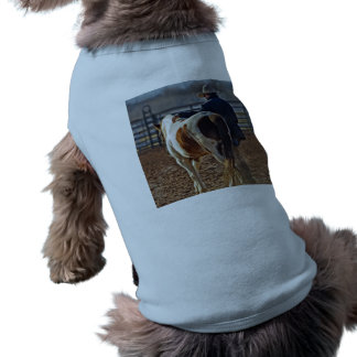 Picture Of A Horse Walking With A Cowboy Dog Clothes