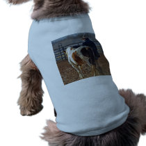 Picture Of A Horse Walking With A Cowboy Tee
