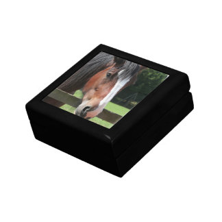 Picture of a Quarter Horse Gift Box