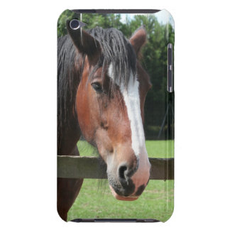 Picture of a Quarter Horse iTouch Case
