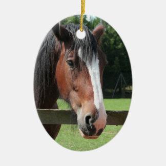 Picture of a Quarter Horse Ornament