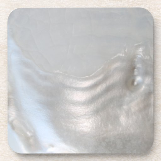 Picture Of A Shell Drink Coasters