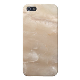 Picture of a shell. cover for iPhone 5