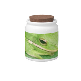 Picture of a Tree Frog Candy Jar