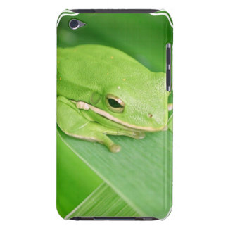 Picture of a Tree Frog iTouch Case iPod Touch Cases