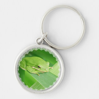 Picture of a Tree Frog Keychain