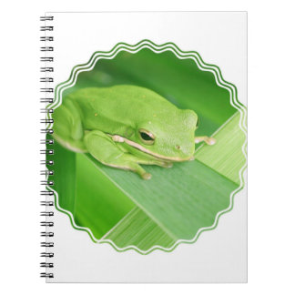 Picture of a Tree Frog Notebook