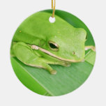 Picture of a Tree Frog Ornament