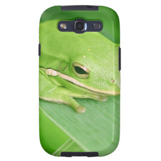 Picture of a Tree Frog Samsung Galaxy Case Galaxy SIII Cases