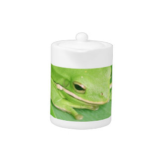 Picture of a Tree Frog Teapot