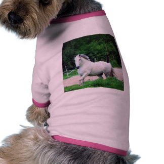 Picture Of A White Horse Running On The Field Pet Clothing