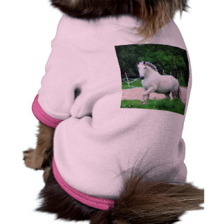 Picture Of A White Horse Running On The Field Pet T Shirt