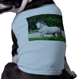 Picture Of A White Horse Running On The Field Dog T Shirt
