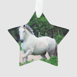 Picture Of A White Horse Running On The Field Ornament