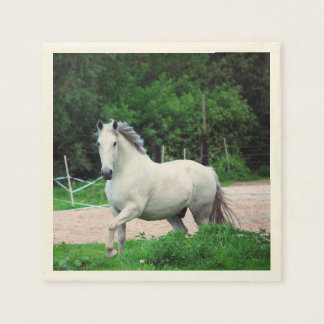 Picture Of A White Horse Running On The Field Standard Cocktail Napkin