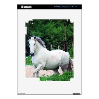 Picture Of A White Horse Running On The Field Skin For iPad 3