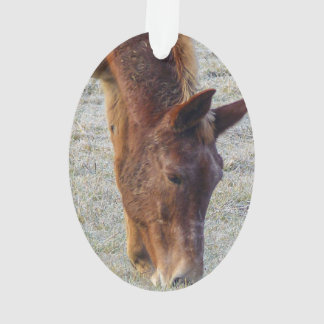 Picture Of A Wild Horse Grazing Ornament