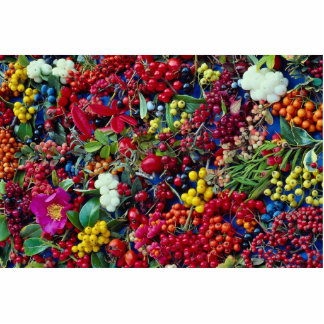 Picture of Autumn berries Cut Outs