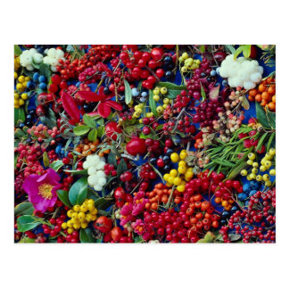 Picture of Autumn berries Postcard