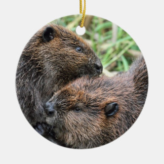 Picture of Beavers Grooming Ceramic Ornament