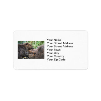 Picture of Beavers Grooming Personalized Address Labels