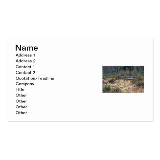 Picture of Bobcat Business Card