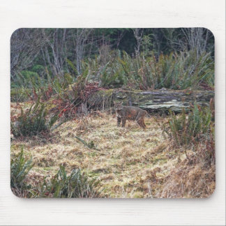 Picture of Bobcat Mouse Pad