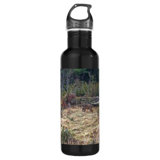 Picture of Bobcat Stainless Steel Water Bottle