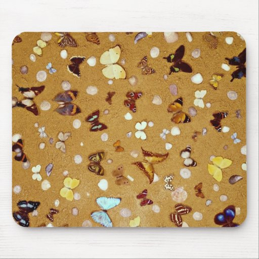 Picture of Butterflies on sand with shells Mouse Pad