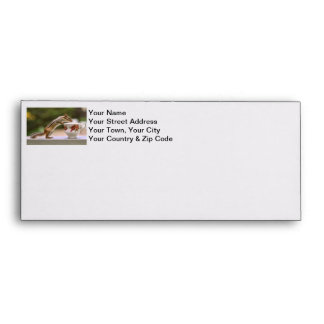 Picture of Chipmunk with China Teacup Envelopes