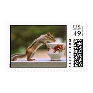 Picture of Chipmunk with China Teacup Postage