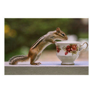 Picture of Chipmunk with China Teacup Print