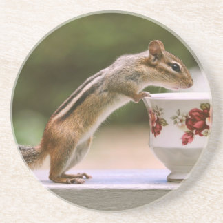 Picture of Chipmunk with China Teacup Sandstone Coaster