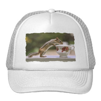 Picture of Chipmunk with China Teacup Trucker Hat