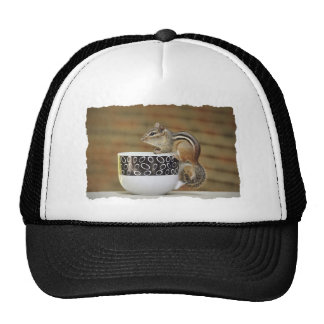 Picture of Chipmunk with Latte Coffee Cup Hats