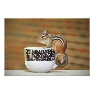 Picture of Chipmunk with Latte Coffee Cup Photo Print