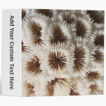 Picture of Coral. 3 Ring Binders