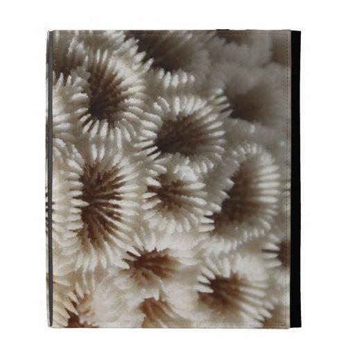 Picture of Coral. iPad Folio Case