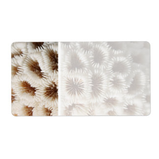 Picture of Coral. Personalized Shipping Labels