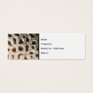 Picture of Coral. Mini Business Card