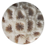 Picture of Coral. Party Plates