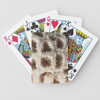 Picture of Coral Bicycle Card Decks