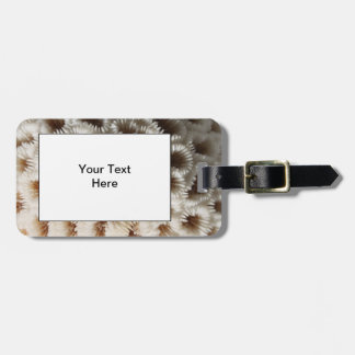 Picture of Coral. Travel Bag Tags